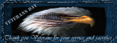 veteransday_usa